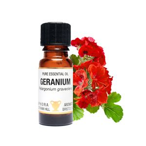 Geranium Essential Oil 10ml  - Amphora Aromatics